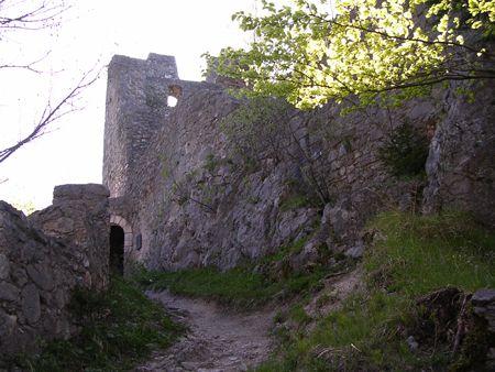 Sehenswürdigkeiten - die Ruhine Wartenfels am Fuße des Schobers - Thalgau Salzburg