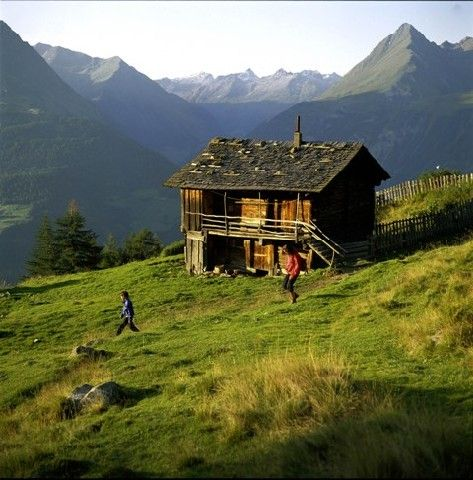 Alm am Zunig - Matrei i. O. - Hohe Tauern Osttirol Tirol