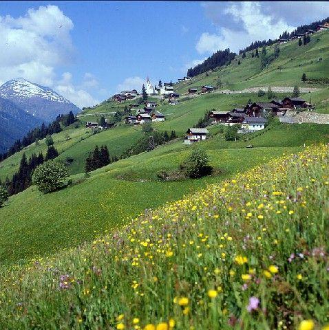 Sommer in St. Veit im Defereggental - Defereggental Tirol