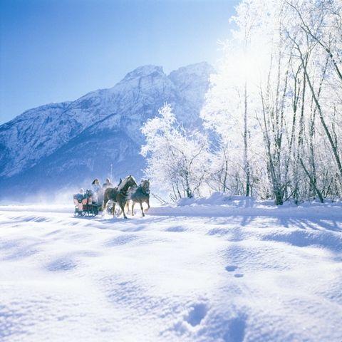 Pferdeschlittenfahrten - Hohe Tauern Osttirol Tirol