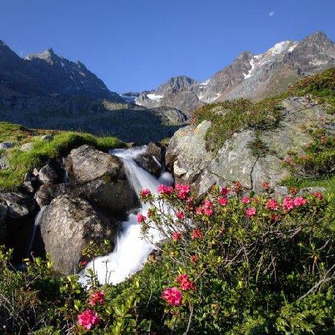 BESTAUNEN SIE UNBERÜHRTE NATUR - Laengenfeld  Tirol