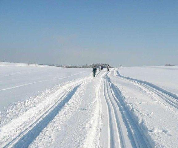 Herrlicher Winterspass für Loipenfans im Langlaufzentrum Tal - Natternbach Upper Austria