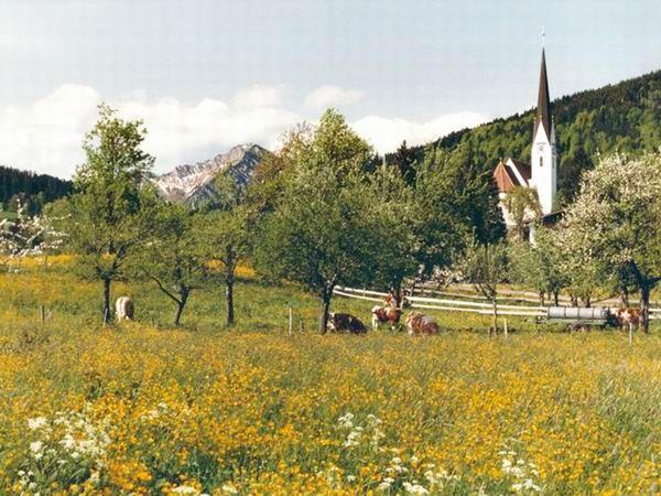 Blumenwiese mit Kirche Maria Himmelfahrt - Bad Wiessee Bayern