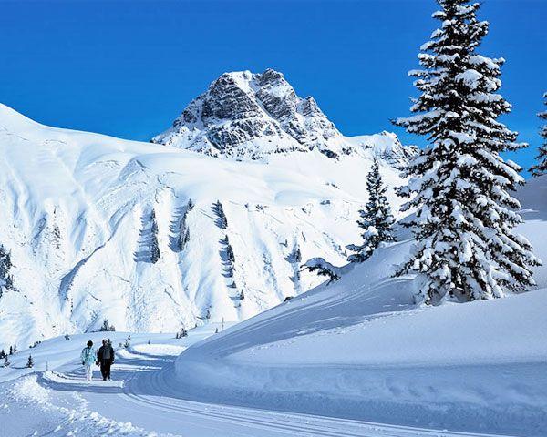 Winterwandern am Hochtannberg Foto: © Vorarlberg Tourismus / Artho