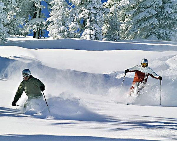 Ski fahren in Österreich Foto: © Steiermark Tourismus / Lanxx
