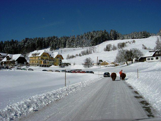 Miesenbach bei Birkfeld Bild für Fotogalerie - Miesenbach bei Birkfeld Steiermark