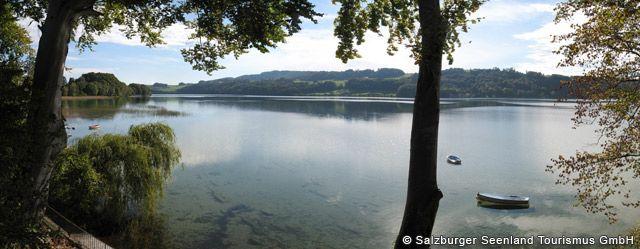 Obertrumer See Bild für Fotogalerie - Obertrumer See Seeham