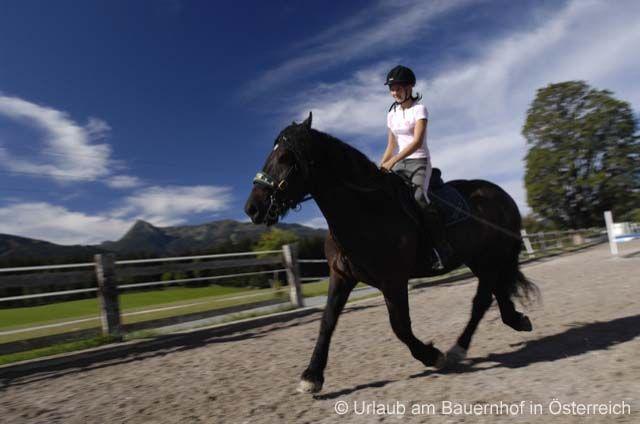 Holidays on a Horseback Riding Farm - Urlaub am Reiterbauernhof