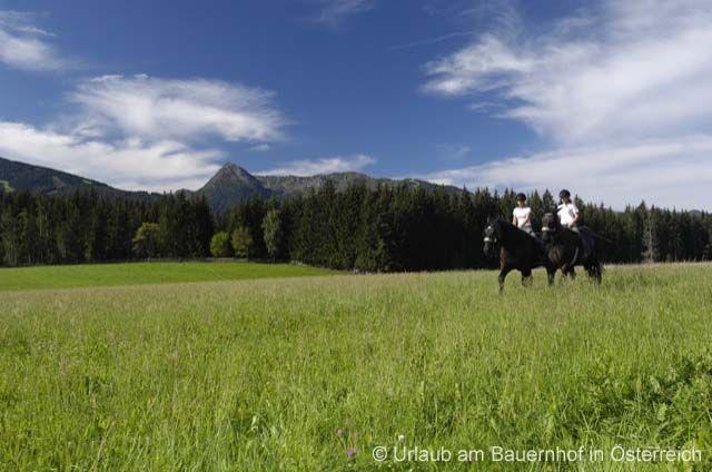 Holidays on a Horse Farm - Urlaub am Bauernhof mit Reitmoeglichkeit