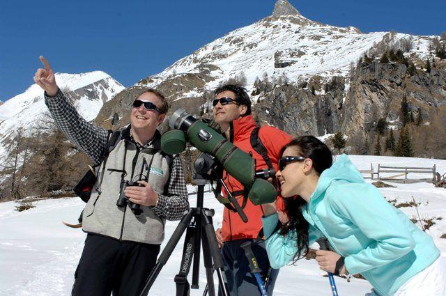 Wildtierbeobachtung - Hohe Tauern Osttirol Tirol
