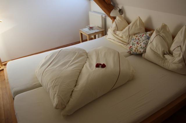 Schlafen im Kornfeld - Buchgrabenhof Minihof-Liebau