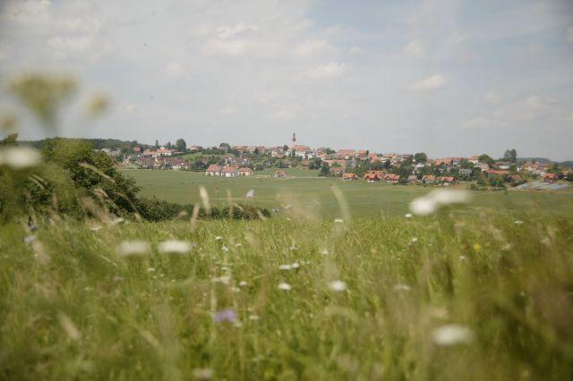 Frühlingsstimmung - Kirchberg / Raab Steiermark