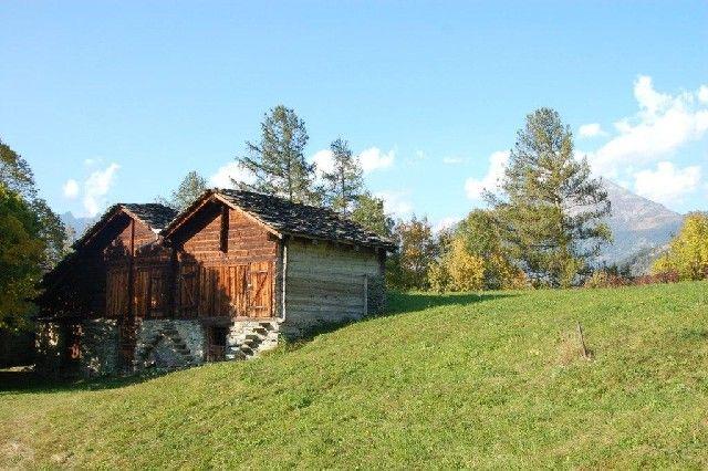 Alte Walliserhäuser rund um Visperterminen - Visperterminen Valais