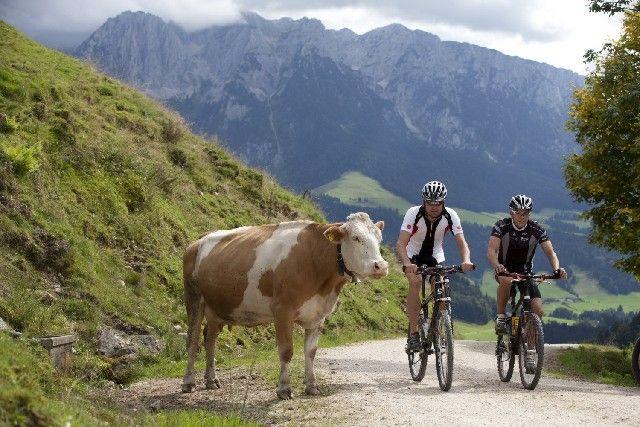 Bikeparadies Kaiserwinkl - Kaiserwinkl Tirol