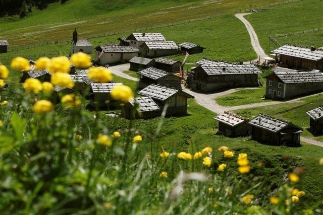 Fane Alm - Gitschberg-Jochtal South Tirol