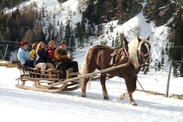 Pferdeschlittenfahrten - Huben Tirol