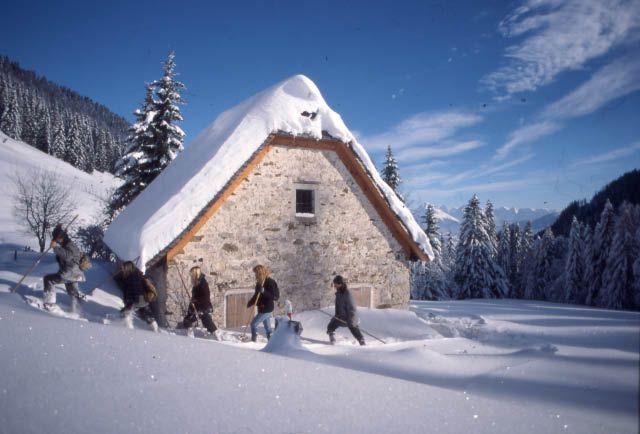Bild: Schneeschuhwandern in der herrlichen Landschaft der Urlaubsregion Pyhrn-Priel mit den Anbietern von Schneeschuhwanderungen! - Pyhrn-Priel Oberoesterreich
