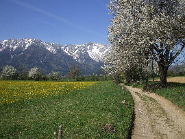 Puchberg  am  Schneeberg Lower Austria