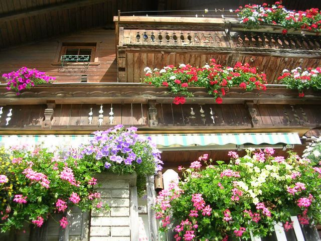 Unser Blumenschmuck am Haus - STOFFENHOF Thurn