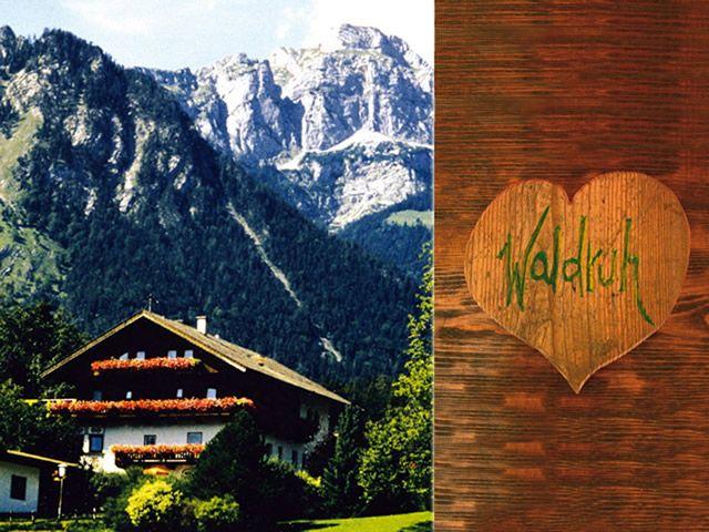 Waldruh Wiesing