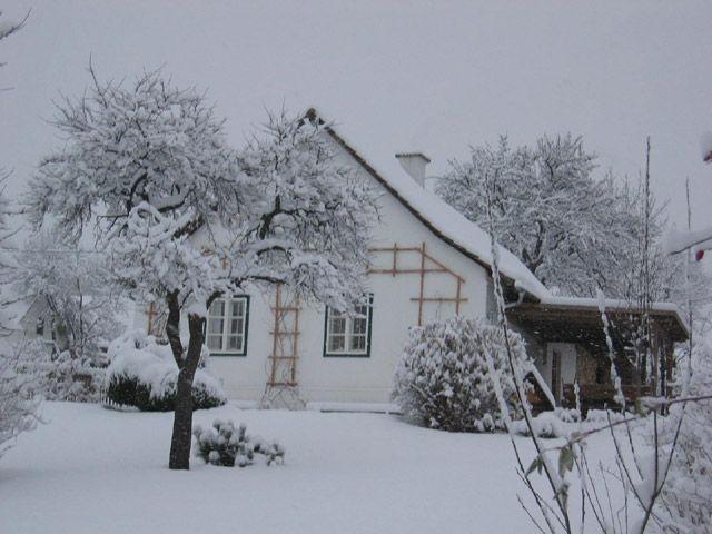 Beim Schachnerhaus - Urlaub so wie ich ihn mag! Bild für Fotogalerie - Beim Schachnerhaus - Urlaub so wie ich ihn mag! Poellauberg