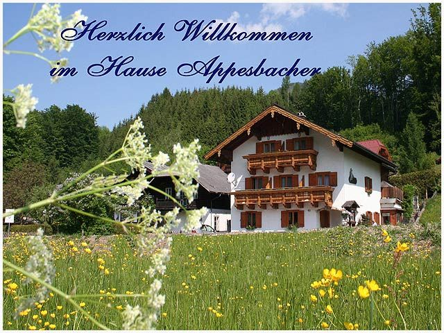 Haus Appesbacher St. Wolfgang