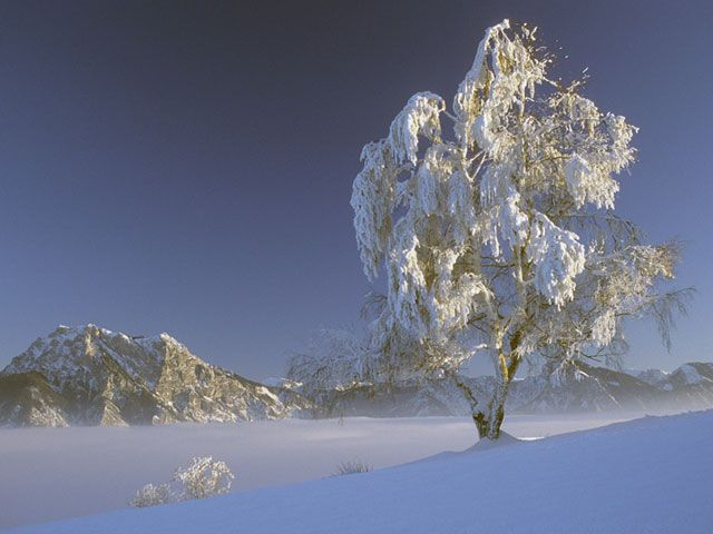 Winterlandschaft in Pinsdorf mit Blick auf den Traunstein - Pinsdorf Upper Austria