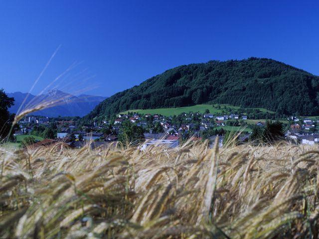 Pinsdorf Oberoesterreich