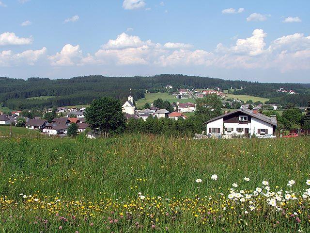 Herzlich Willkommen in Sandl - Naturerholung pur in Sandl/Viehberg der Schi- und Feriengemeinde - Sandl Oberoesterreich