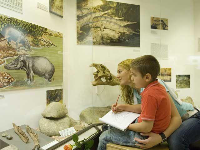 Das Krahuletz-Museum ist das älteste Museum Niederösterreichs. - Eggenburg Niederoesterreich