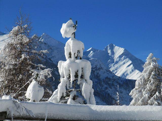 Auf dem Weg zur Bodenalm; Foto Friedl Steiner - Praegraten am Großvenediger Tirol
