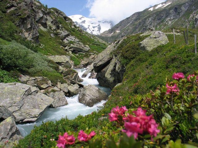 Maurertal - im Hintergrund die Eisriesen - Praegraten am Großvenediger Tirol