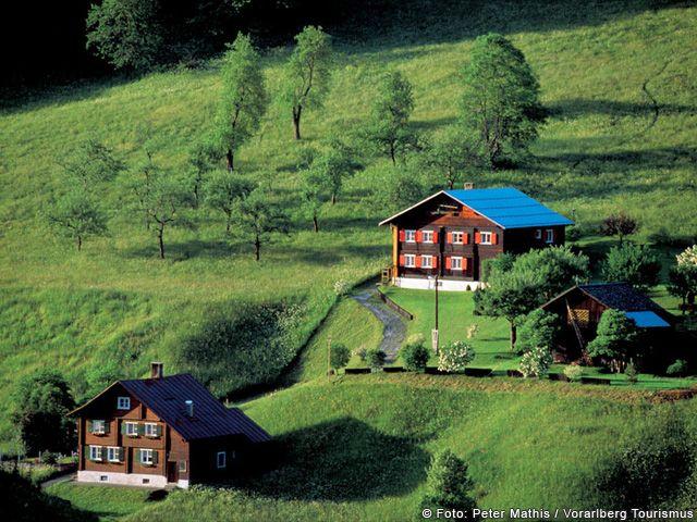 Grüne Wiesen in Vorarlberg - Vorarlberg