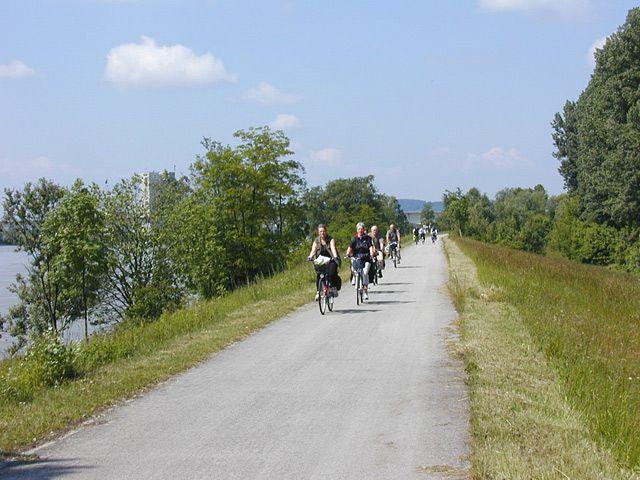 Radweg entlang der Donau - Klein-Poechlarn Niederoesterreich