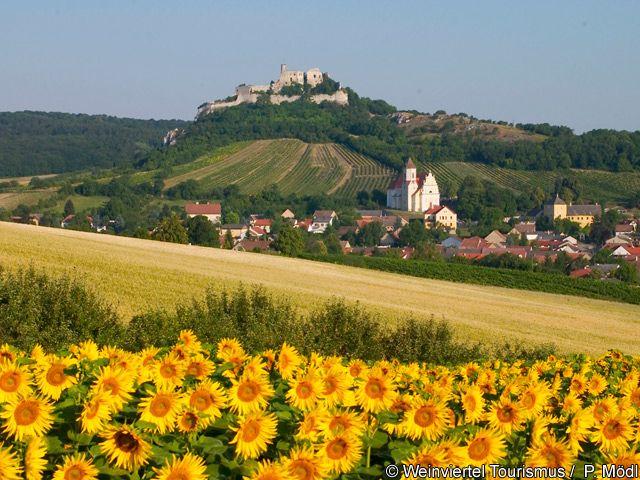 Falkenstein im Sommer - Weinviertel Niederoesterreich