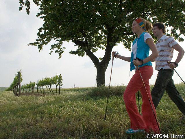 Nordic Walking - Weinviertel Lower Austria