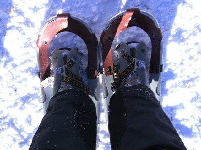 Schneeschuhwanderung - Kematen Tirol