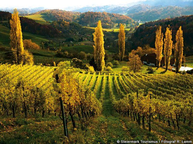 Herbst in der Steiermark - Steiermark