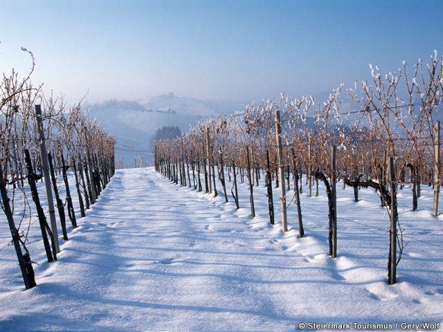 Winterlandschaft in der Steiermark - Steiermark