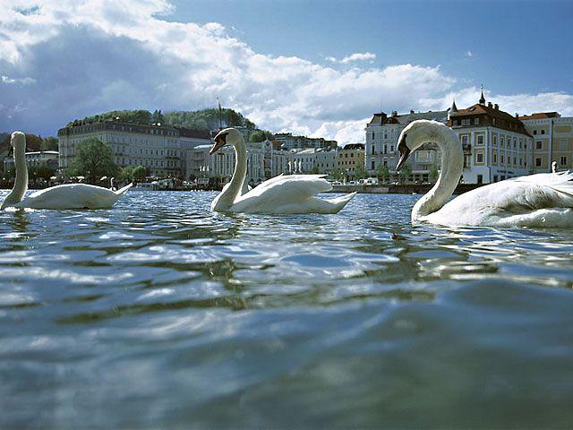 Gmunden Foto: © OÖ Tourismus - Austria Superioara