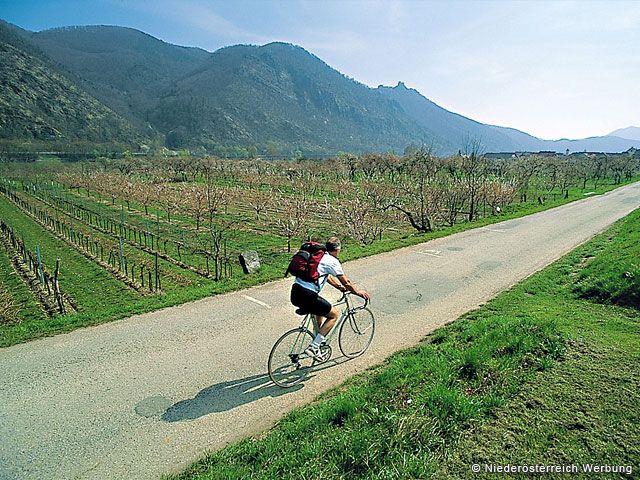 Radfahren in Niederösterreich - Niederoesterreich