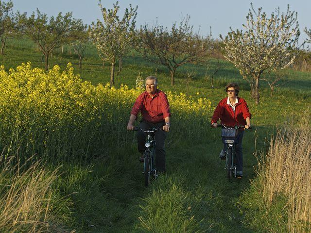 Der Rosalia-Radwanderweg bringt Gäste zu den schönsten Punkten der Region Rosalia - Rosalia Burgenland