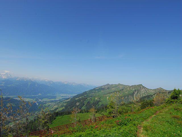 Falv - Blons Vorarlberg
