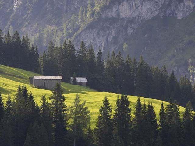 Ställe Sommer - Warth am Arlberg Vorarlberg