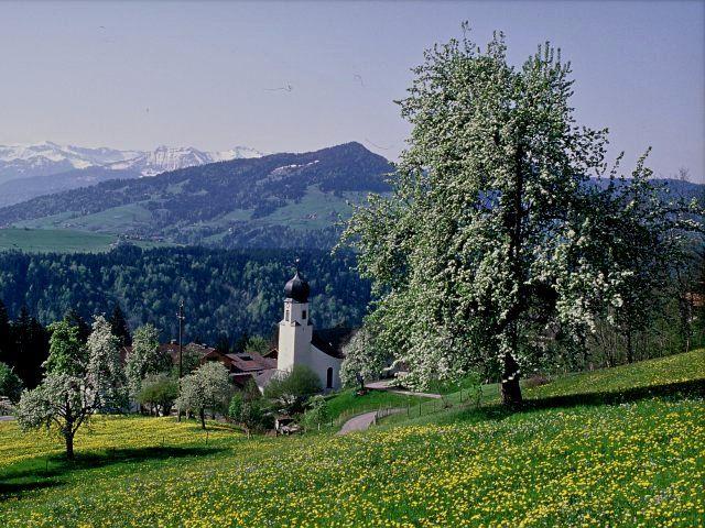 Blick auf die Pfarrkirche Doren im Frühling - Doren Vorarlberg