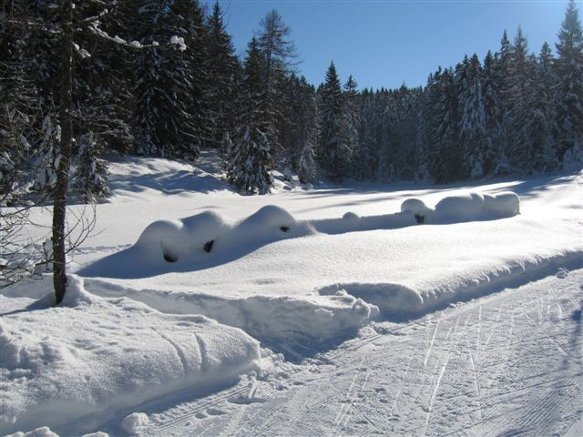 With our free cross-country bus to a cross-country trail which is guaranteed to have snow. - Ampass Tirol