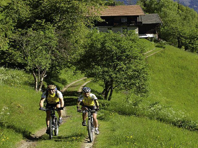Viele Mountainbiketouren stehen Ihnen in und rund um Anras in Verfügung. - Anras Tirol