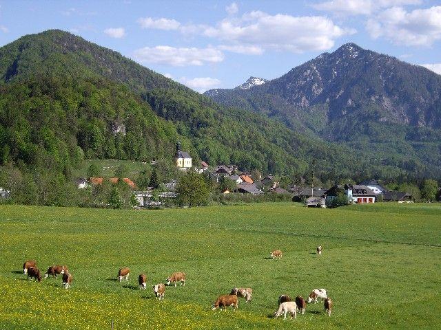 Tourismusverband Ebenau Bild für Fotogalerie - Ebenau Salzburg