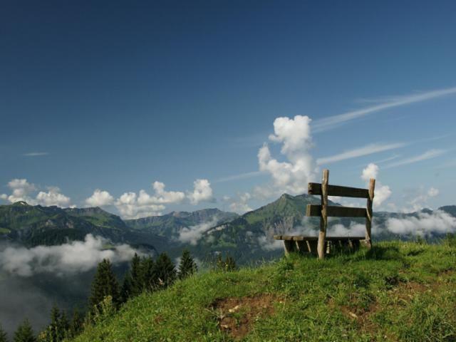 Bergerlebnis auf der Niedere in Andelsbuch - Bregenzerwald Vorarlberg