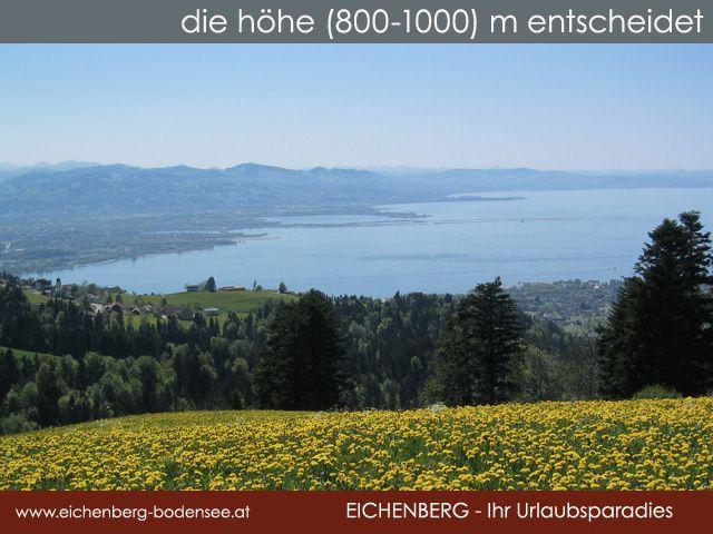 sommer-aussicht - Eichenberg Vorarlberg